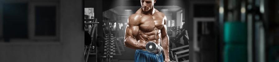 الضخامة العضلية